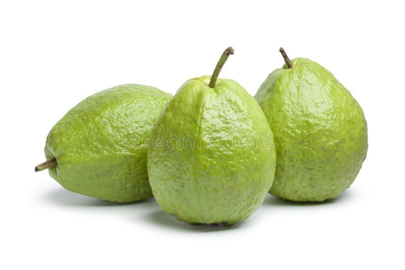 guava свежих фруктов весь стоковое фото