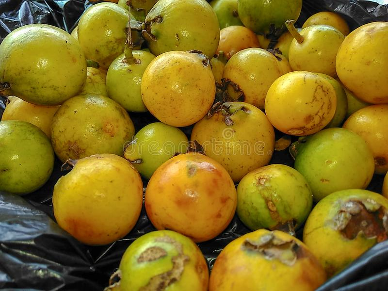 guava свежих фруктов стоковые изображения rf