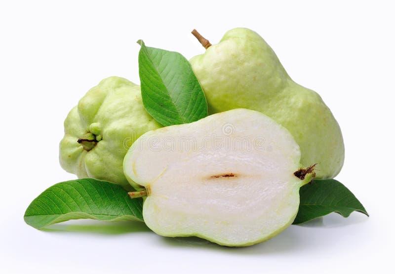 Guava (тропический плодоовощ) на белой предпосылке стоковое изображение