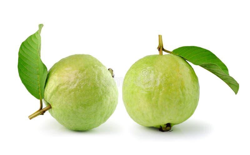 Guava (тропический плодоовощ) на белой предпосылке стоковое изображение rf