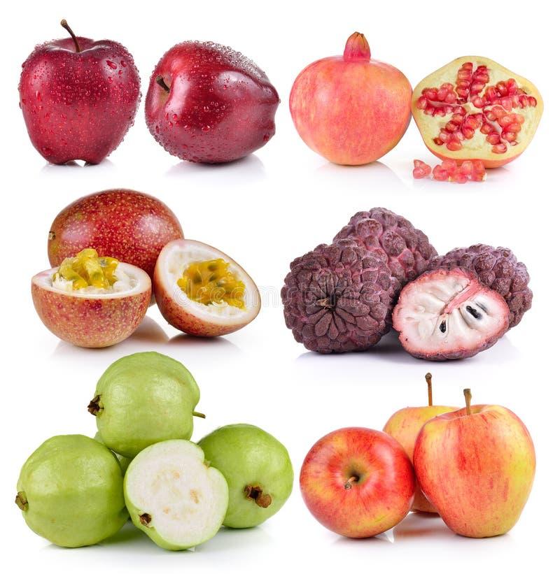 Guava, яблоко, яблоко заварного крема, маракуйя, гранатовые деревья стоковые изображения rf