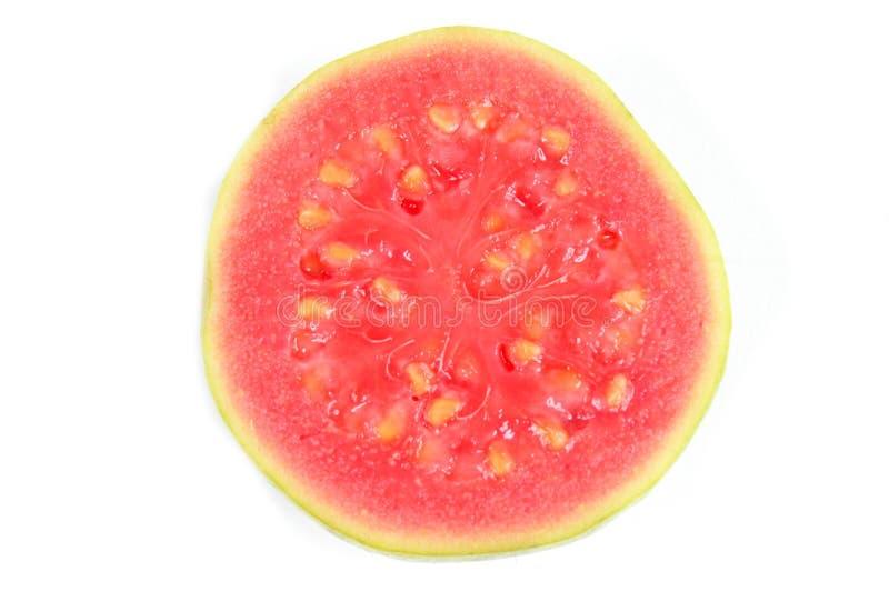 guava arkivfoton