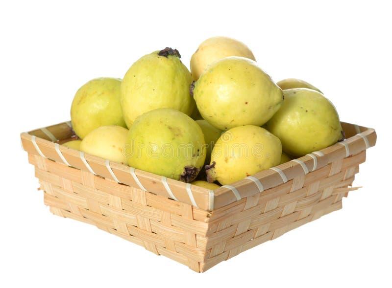 Guava royaltyfri bild