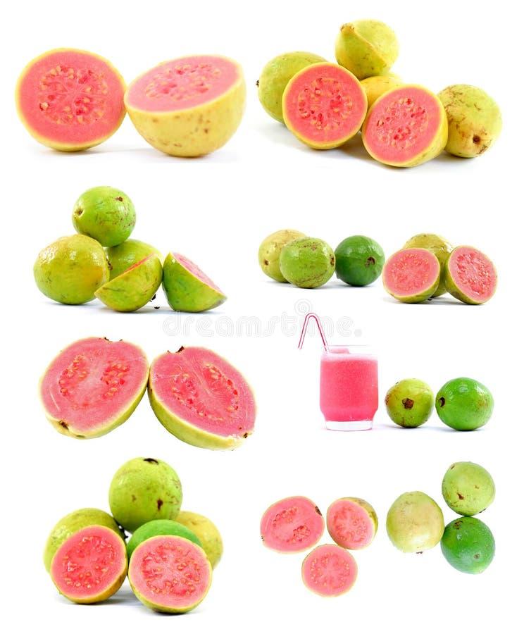 Free Guava Royalty Free Stock Photos - 5403088