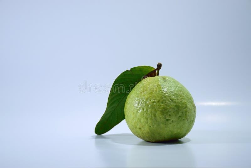 Guava bielu tło obrazy royalty free