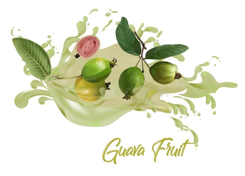 Guava fruit juice on water splash royalty free illustration