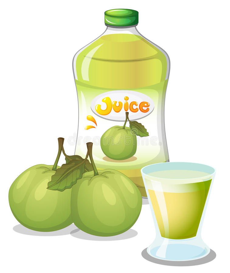 Guava juice stock illustration