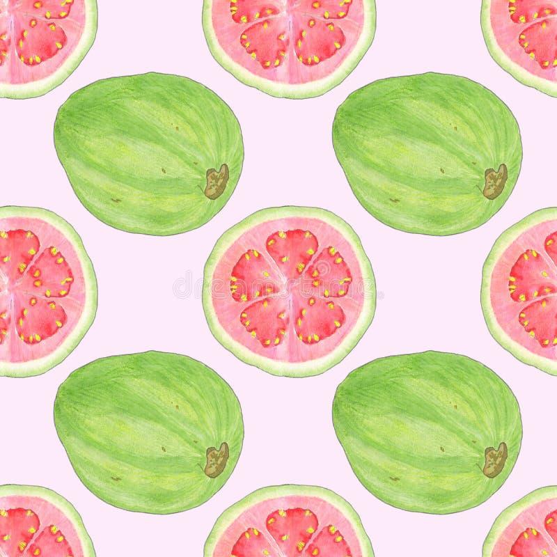 Guava lub guayaba akwareli bezszwowy wzór royalty ilustracja