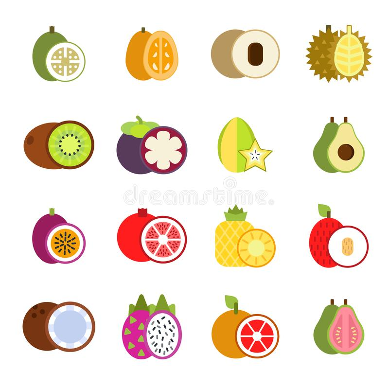 Guava, mango and others illustrations of tropical fruits in flat style royalty free illustration