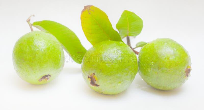 Guava owoc z liśćmi odizolowywającymi na białym tle fotografia stock