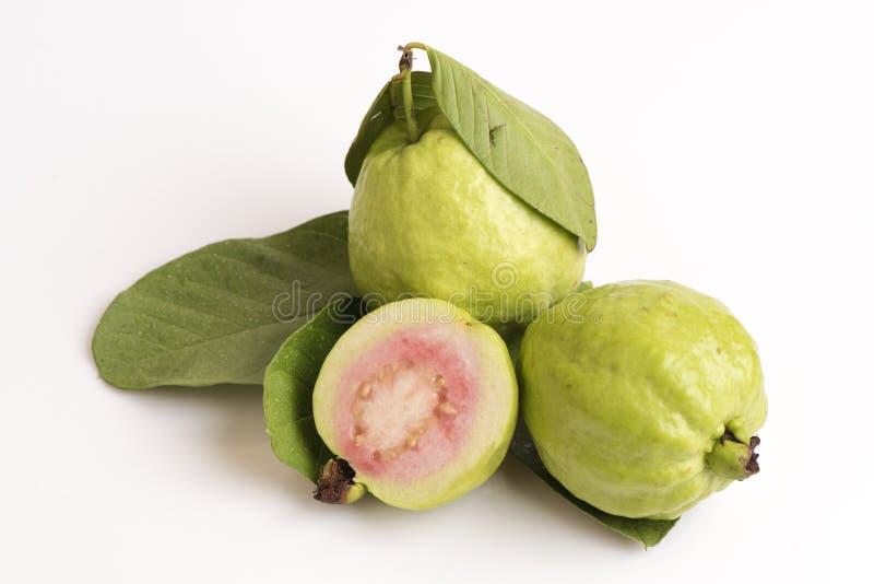 Guava (Psidium guajava L ) owoc Thailand obrazy stock