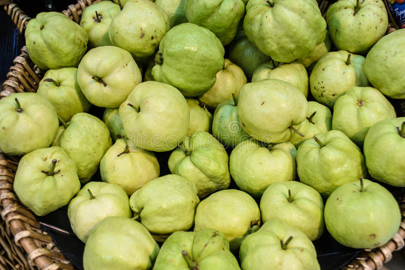 Guava in thailand stock image