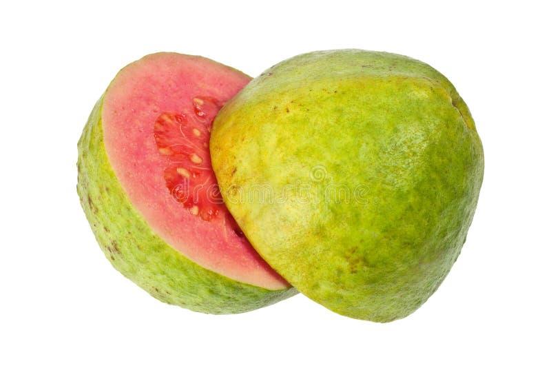 guavapink arkivbilder