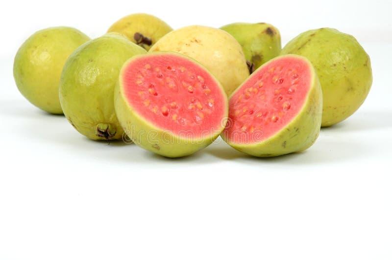 guavas royaltyfri fotografi
