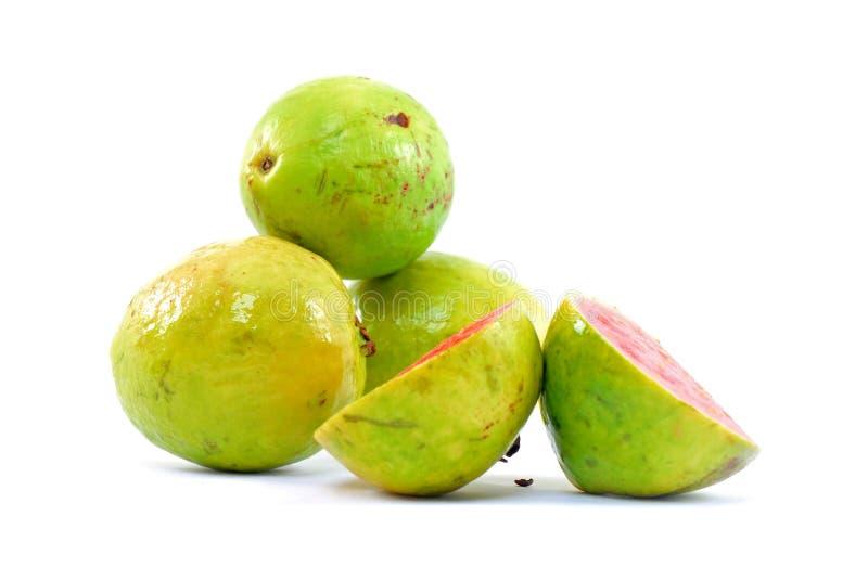 guavas royaltyfri foto
