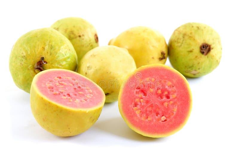 Guave royalty-vrije stock afbeeldingen