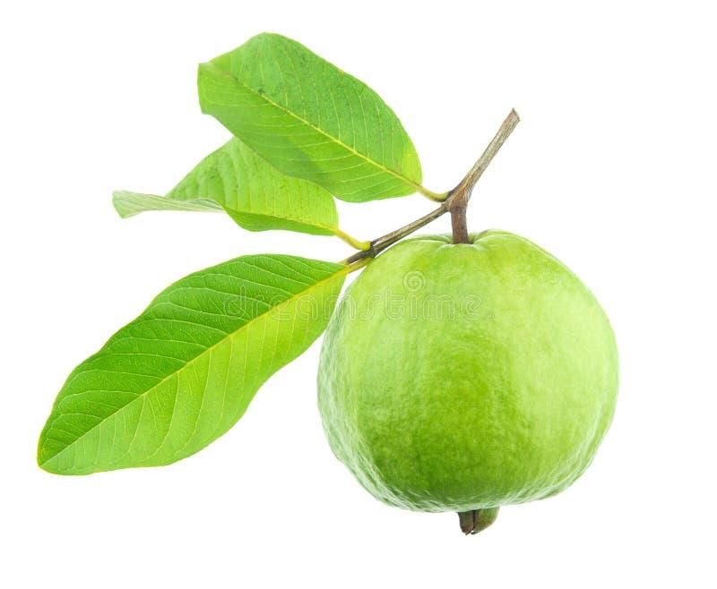 Guavefruit royalty-vrije stock afbeelding