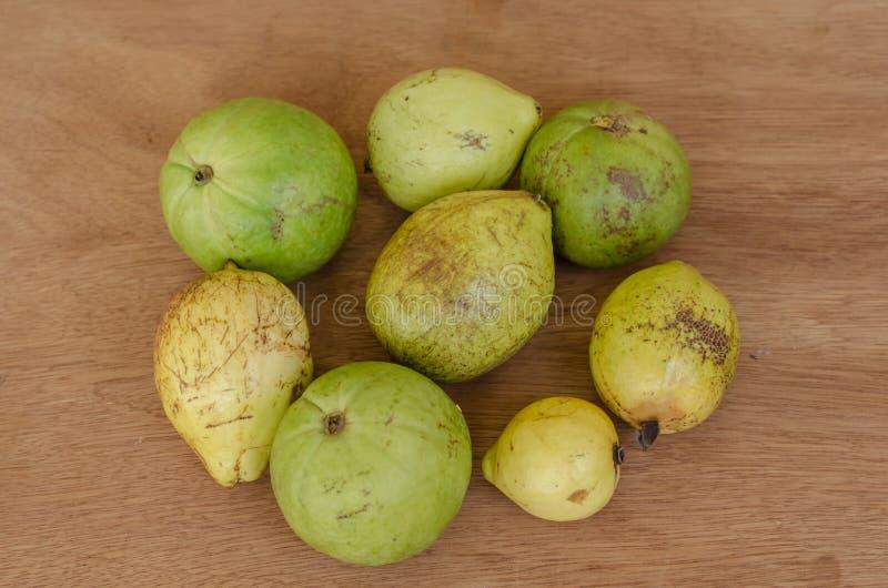 Guaven van Twee Verschillende Types stock afbeelding
