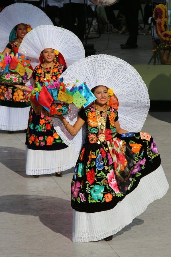 Guelaguetza festival, Oaxaca, 2014. Performance of traditional Mexican dances at the Guelaguetza festival, Oaxaca on July 28, 2014 royalty free stock photos