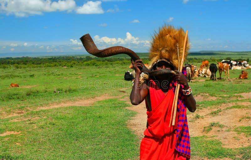 Guerreiro do Masai que joga o chifre tradicional fotografia de stock royalty free