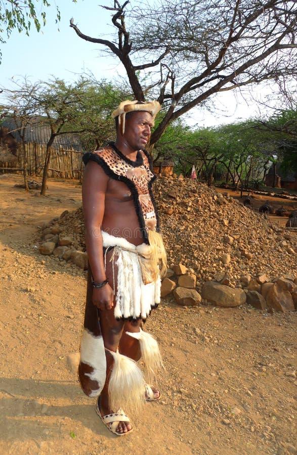 Guerreiro do tribo Zulu no grande curral em Shakaland Zulu Village, Soth África fotos de stock