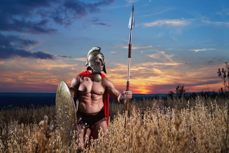Guerreiro espartano forte no vestido de batalha com um protetor e uma lança fotos de stock