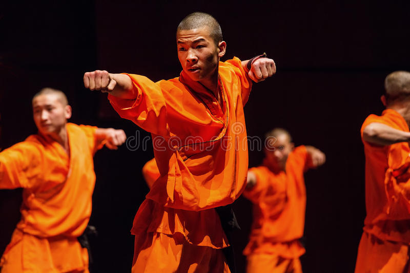 Guerrero de Shaolin foto de archivo
