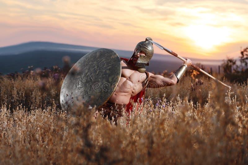 Guerrero espartano fuerte en vestido de batalla con un escudo y una lanza fotos de archivo libres de regalías