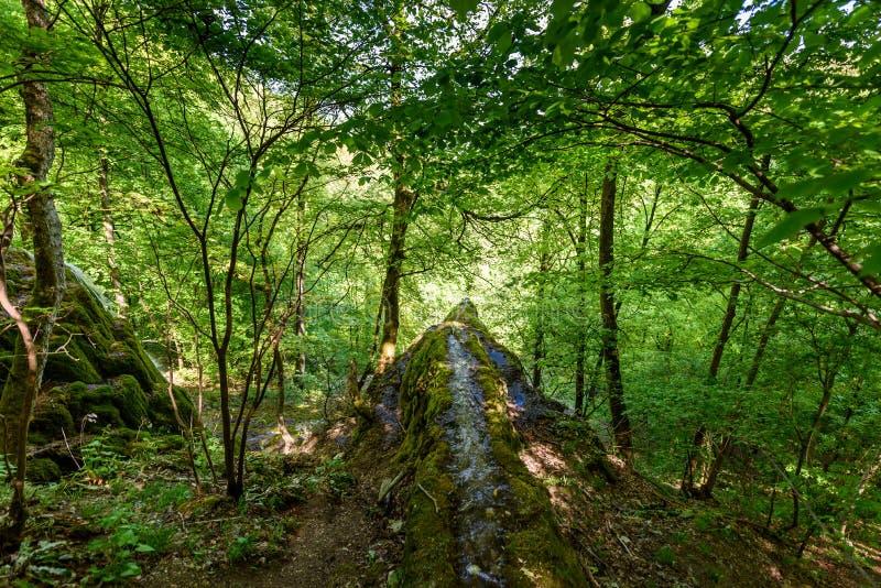 Guetersteiner Waterfall of Bad Urach, Swabian Alb, Baden-Wuerttemberg, Germany, Europe royalty free stock images