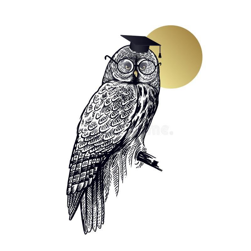 Gufo dell'uccello in cappuccio quadrato e vetri accademici isolati su fondo della luna royalty illustrazione gratis