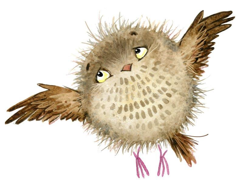 Gufo Gufo sveglio uccello della foresta dell'acquerello Illustrazione della scuola Uccello del fumetto royalty illustrazione gratis