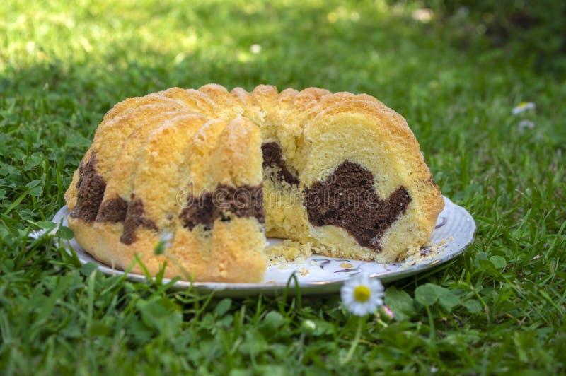 Gugelhupf na grama verde, bolo doce checo dois-colorido comestível muito saboroso chamou o babovka, pronto para comer imagem de stock royalty free