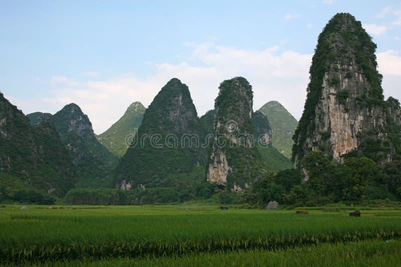 Gui-lin landscapes stock images