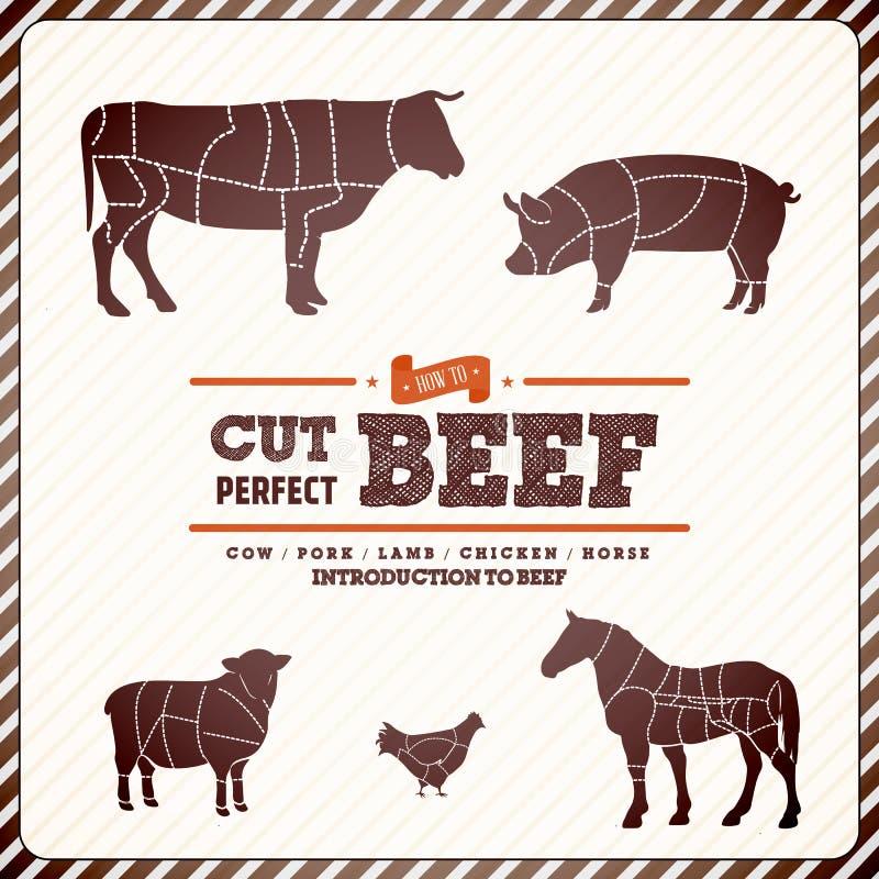 Guia do diagrama do vintage para cortar a carne ilustração royalty free