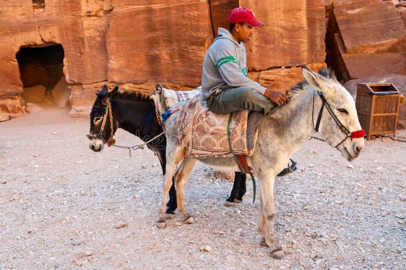 Guida con gli asini nel PETRA, Giordania fotografia stock libera da diritti