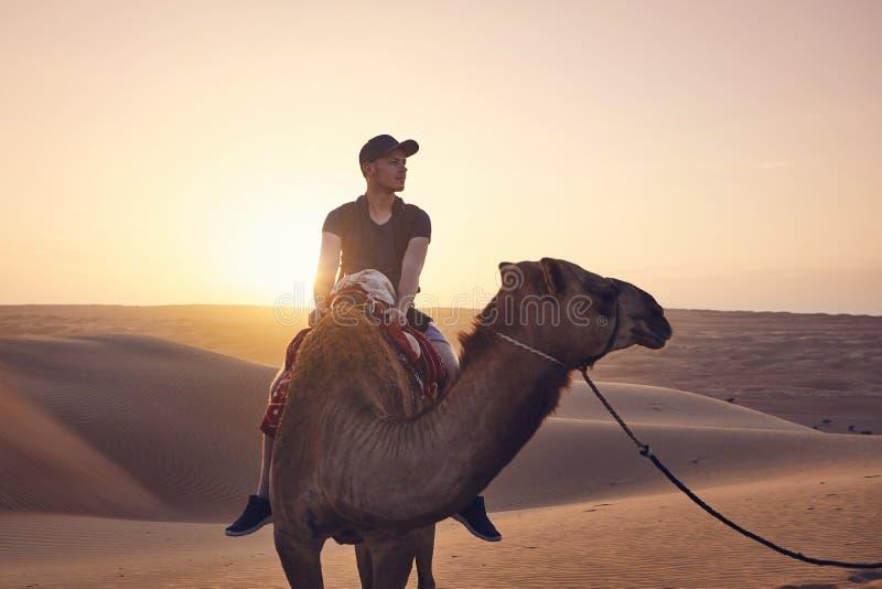 Guida del cammello nel deserto fotografia stock
