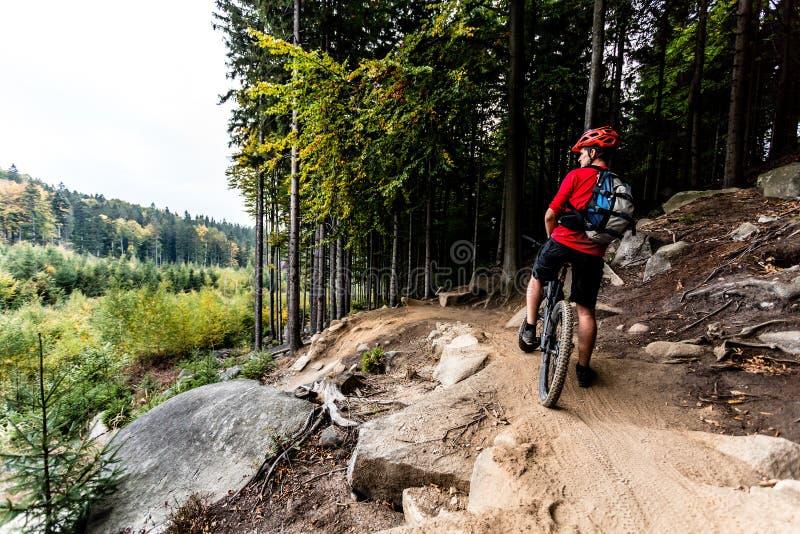 Guida del ciclista in mountain-bike a un solo binario nella traccia della foresta di autunno immagini stock libere da diritti