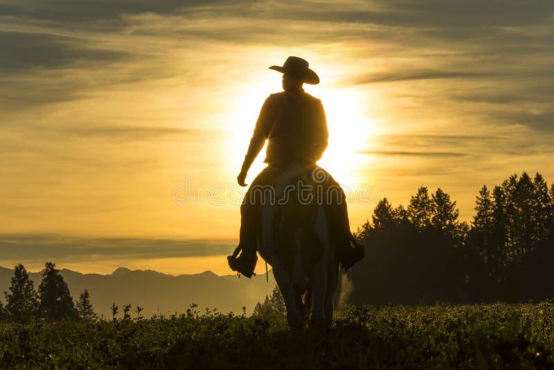 Guida del cowboy attraverso il pascolo con le montagne nei precedenti immagini stock