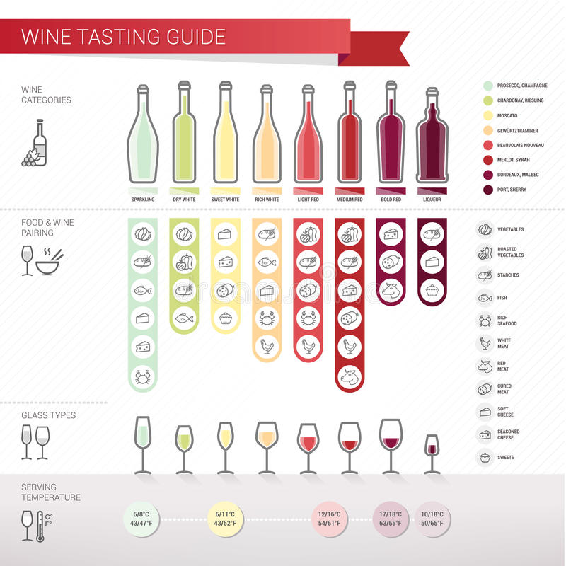 Guida dell'assaggio di vino illustrazione di stock