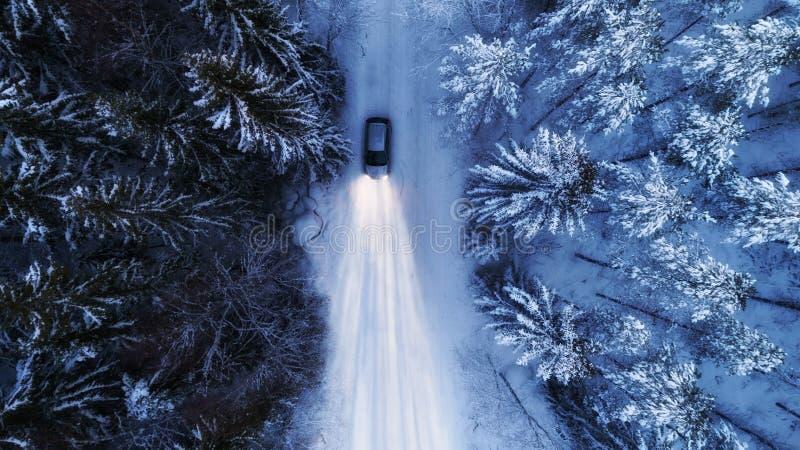 Guida di veicoli sulla strada campestre nevosa attraverso la foresta di inverno alla notte Luce abbagliante sopra fotografie stock