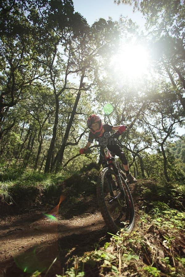 Guida matura dell'uomo del motociclista di MTB attraverso la foresta immagine stock