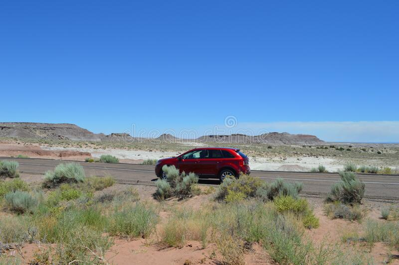 Guida SUV su Rpad thru Petrify National Forest Sandy Desert Crusty Surface Road immagine stock libera da diritti