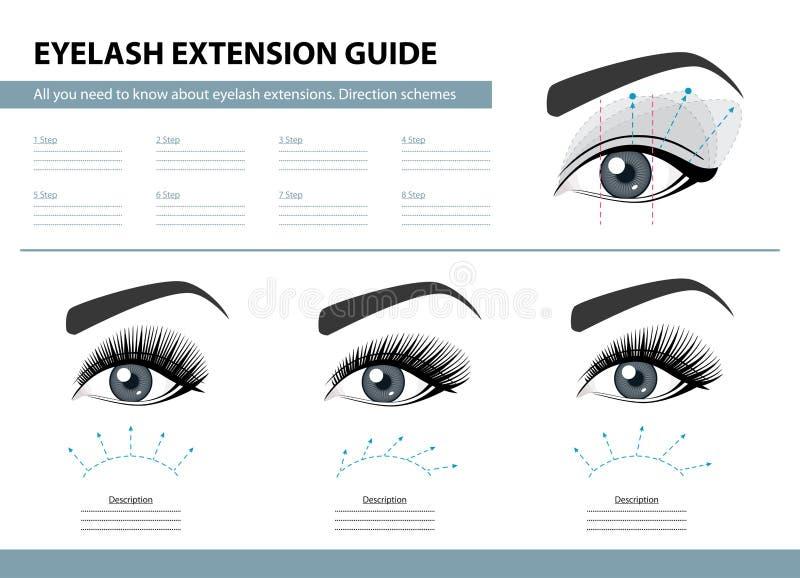 Guide d'extension de cil Plans de direction Astuces et tours pour l'extension de mèche Illustration de vecteur d'Infographic desc illustration de vecteur