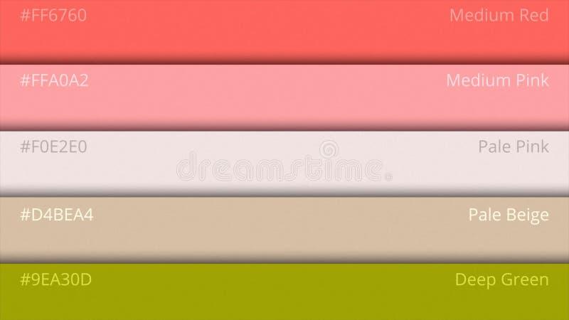 Guide de palette de couleur Couleurs de Web L'échantillon colore le catalogue sélection de couleurs dans le HTML de web design Lu illustration de vecteur