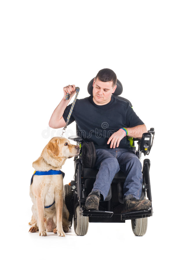Guide Dog royalty free stock photos