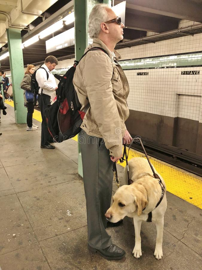Free Guide Dog And Man In Subway Royalty Free Stock Images - 116906299