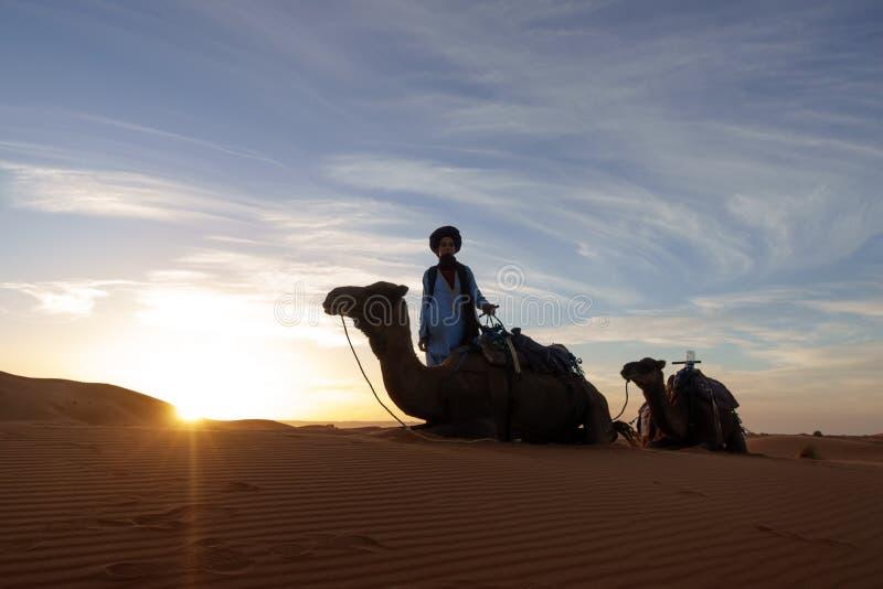 Guide posant pour le photoshoot avec le camelson le fond dans le désert de Merzouga, Maroc photographie stock libre de droits