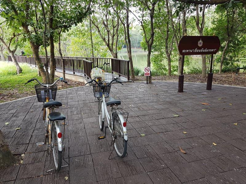 Guidi una bicicletta nel giardino fotografie stock