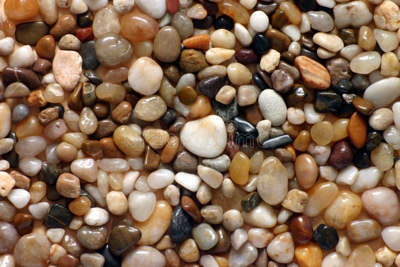 Download Guijarros imagen de archivo. Imagen de playa, guijarros - 1297427