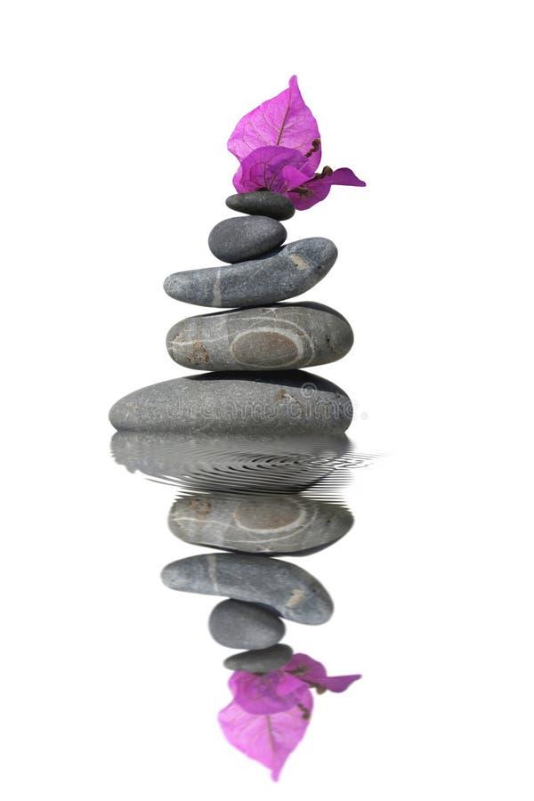 Guijarros de equilibrio con las brácteas púrpuras de la buganvilla fotos de archivo